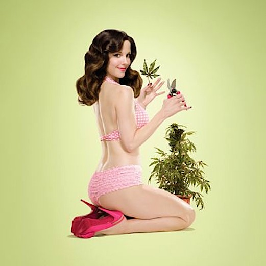 Nancy Botwin, manipuladora y superviviente