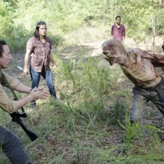 The Walking Dead: Tertulia Zombie – S05E12: Remember