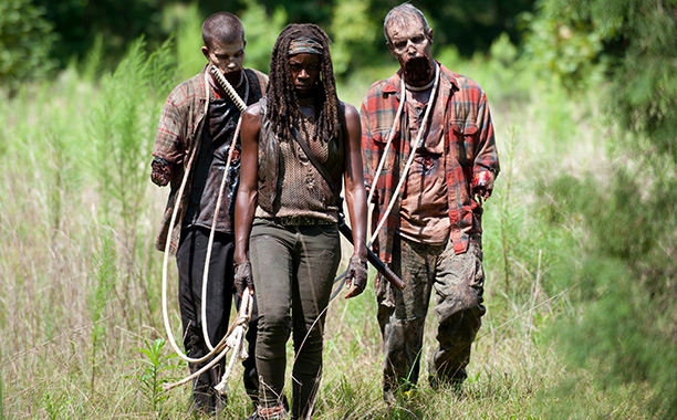 The Walking Dead: after